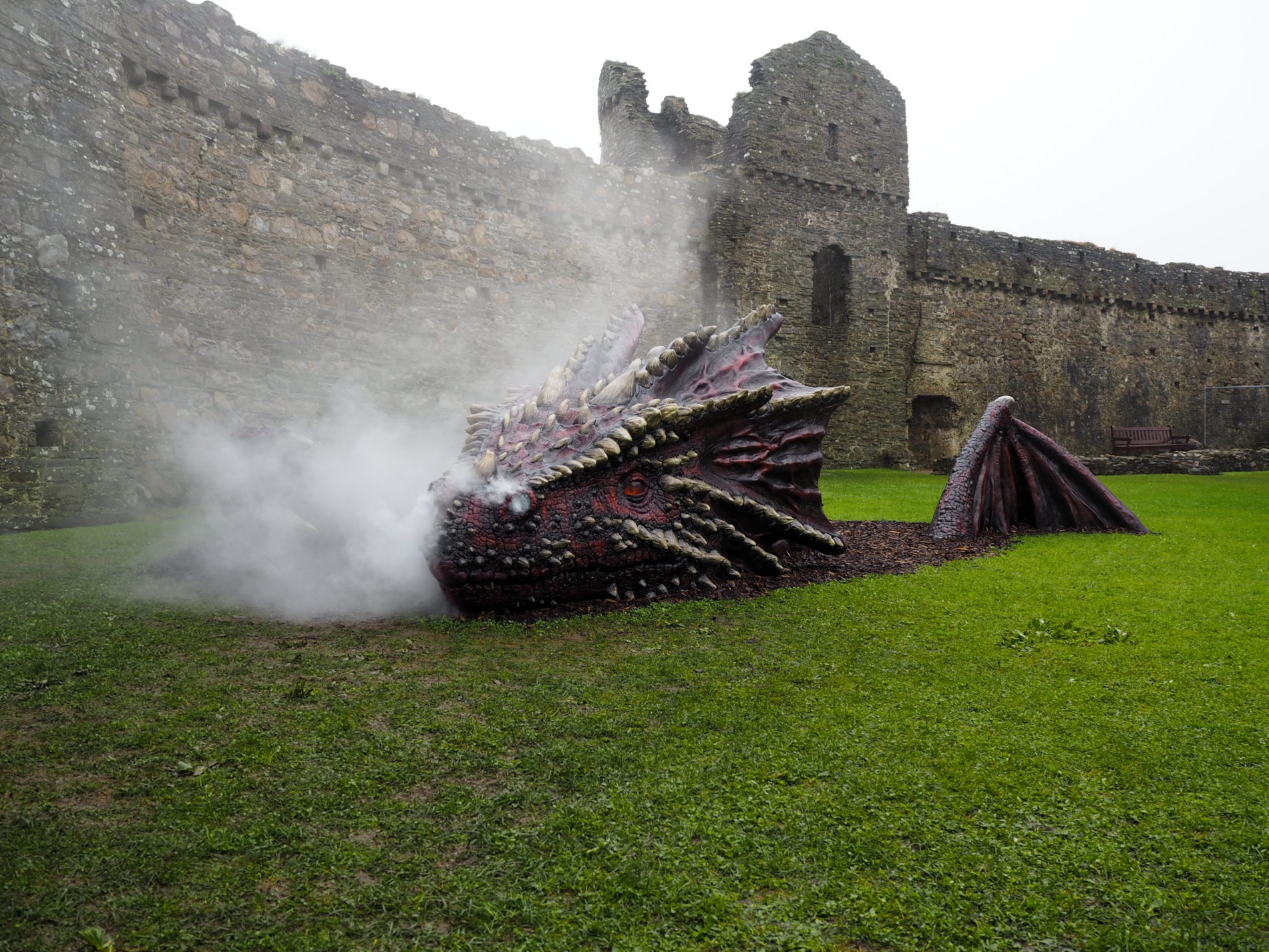 The dragon is part of the Historic Adventures season