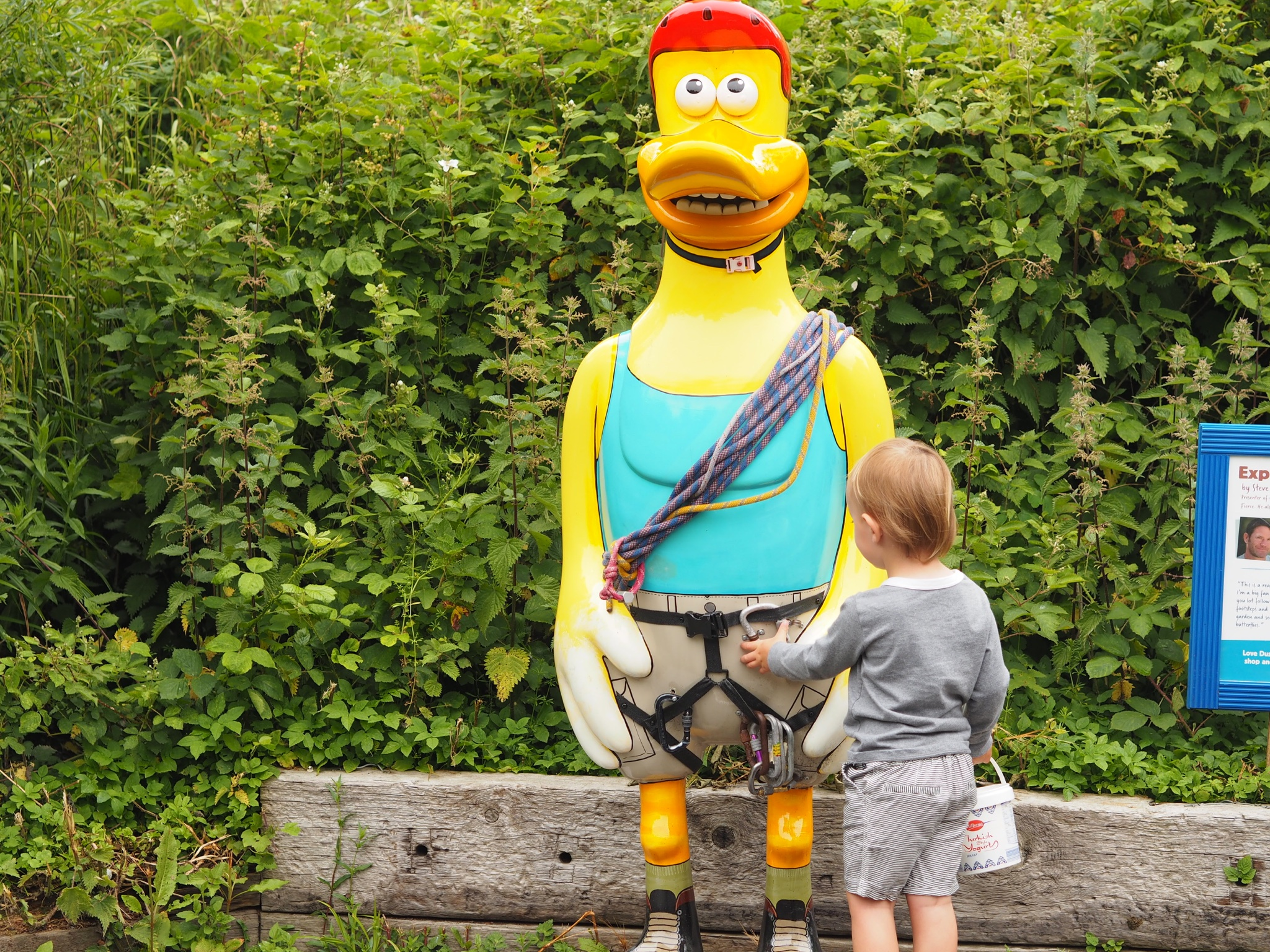 Celebrity Dusty Duck trail at WWT Llanelli Penclacwydd